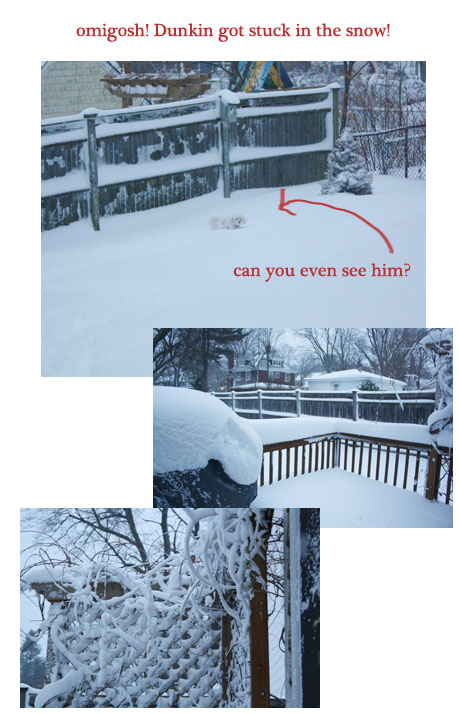 Snow2011