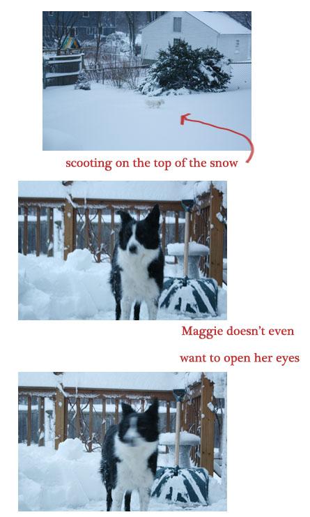 Snow2011_2